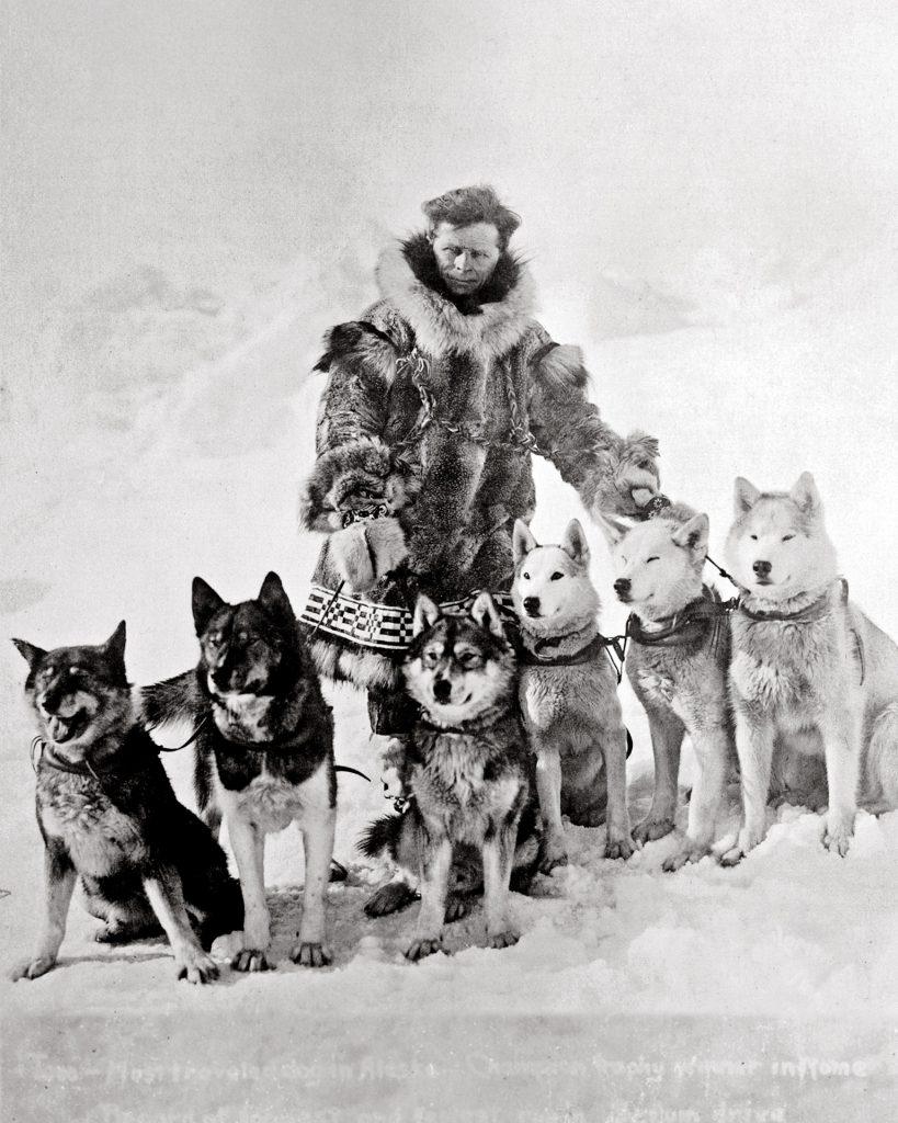 otl_dog_sledding_01